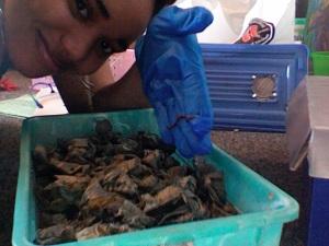 Natasha and her compost bin